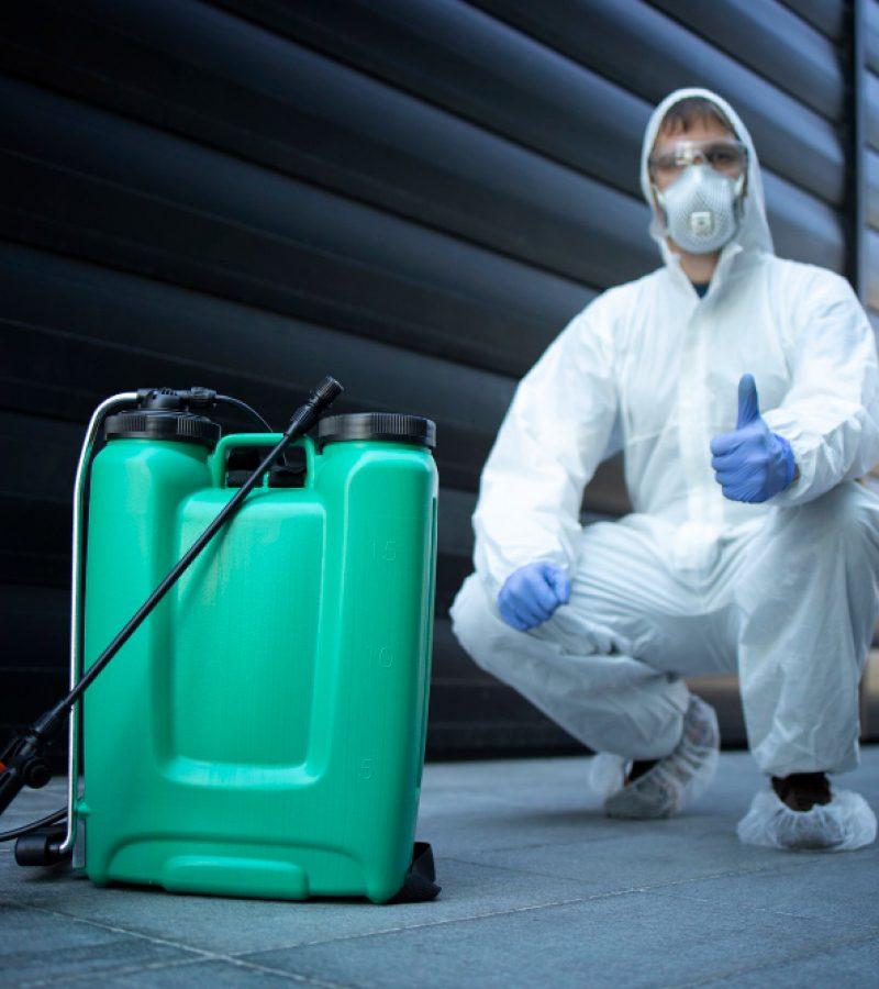 pest control (5)